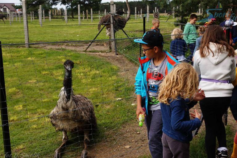 Wycieczka szkolna wparku zoologicznym
